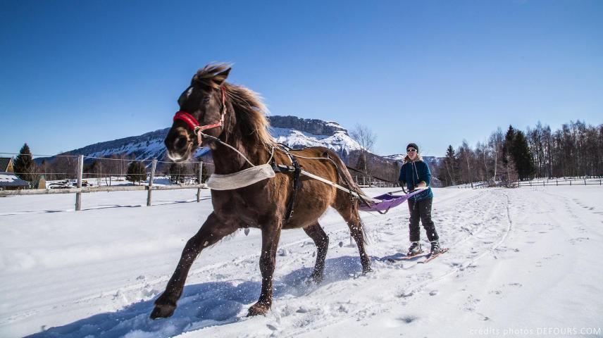 Ski Joëring et Traîneaux