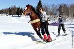 Ski Joering Annecy
