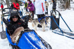 Introduction sled dogs Annecy