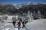 Snowshoeing hike activity